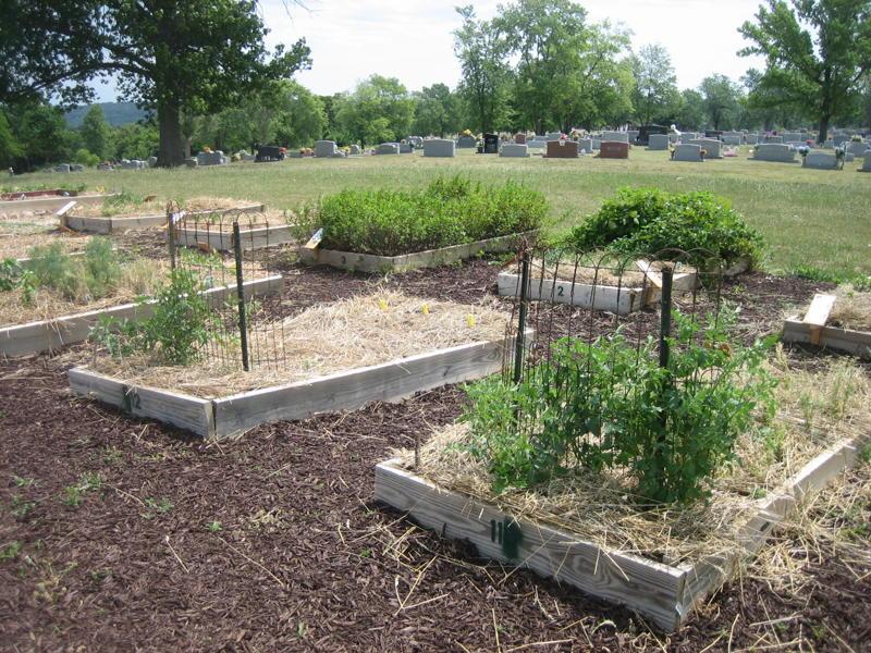 18.-Community-Herb-Garden-2